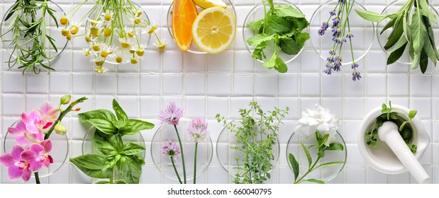 Fresh herbs on white masaic background