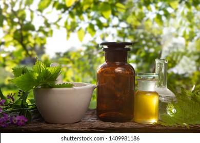 Fresh herbs - Organic essence, essential oil. Essential aroma oil - Alternative Medicine.