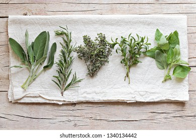 Fresh herbs selection included rosemary, thyme, sage and oregano. Eco-friendly lifestyle