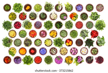 Fresh herbs and spices collection isolated on white background