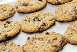 fresh-homemade-chocolate-chip-raisin-250
