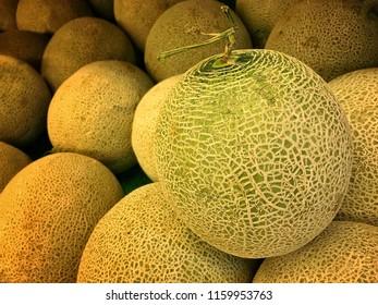 Fresh Honeydew Melon Fruits