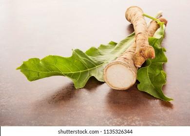 Fresh horseradish root and leaves.