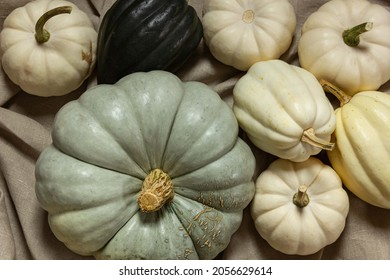 fresh ingredients  on the table, pumpkins, fruits and vegetables, autumn, October, harvest, farmer, vitamins, keto diet, vegan food, thanksgiving, Halloween, season fruits, pastel colors, vegetables