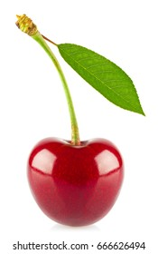 Fresh juicy cherry with green leaf, isolated on white background.