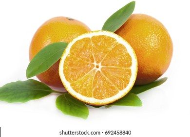 fresh juicy oranges on a white background