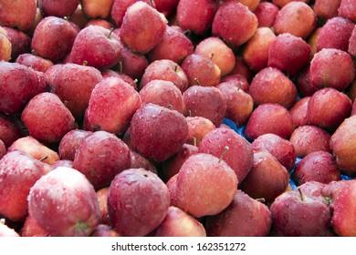 Fresh & juicy red apples