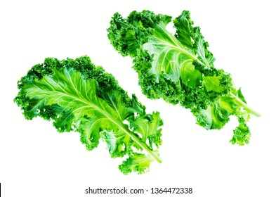 Fresh kale Bunch on a white background. toning. selective focus