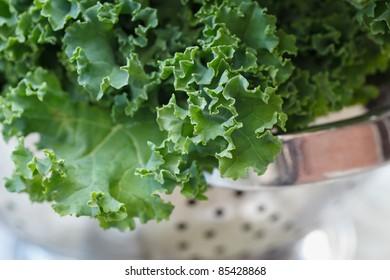 Fresh kale in strainer