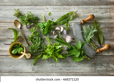 Kitchen Herbs Images, Stock Photos & Vectors | Shutterstock