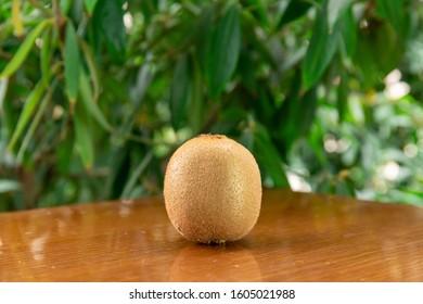 Fresh Kiwi on the table - Shutterstock ID 1605021988