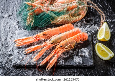 Fresh langoustines on black rock