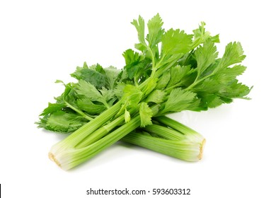 Fresh leaf celery isolated over a white background