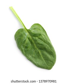 Fresh leaf of spinach isolated on white, top view