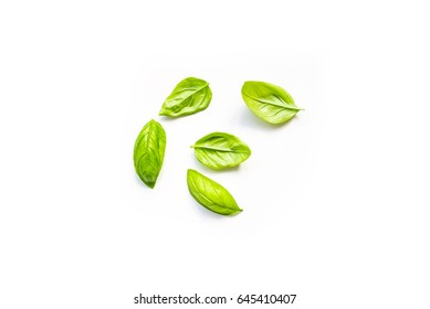 Fresh leaves of organic basil seen from above isolated on a white background
