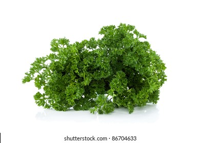 fresh leaves parsley with raindrops, isolated on white background