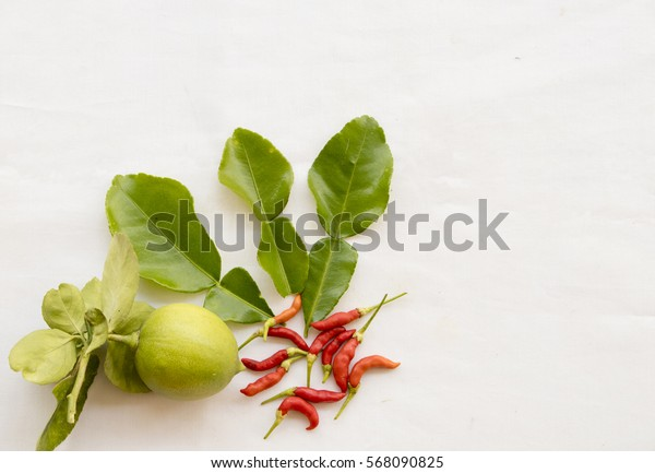fresh leaves vegetables prepared to cook on background white
