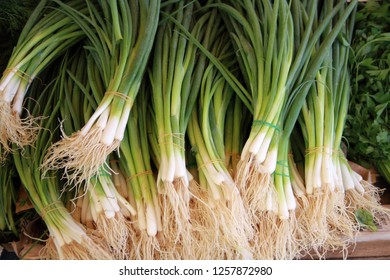 fresh leek onions at the weekly market