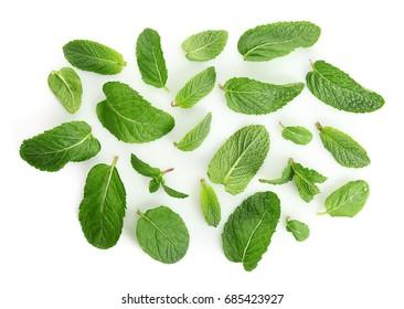 Fresh lemon balm leaves on white background