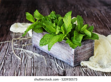 Fresh lemon balm or mint in a small wooden box on a rustic table, selective focus, top view