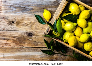 Fresh lemon with leaves. Lemon tree. Box of yellow lemons with fresh lemon tree leaves on wooden background with copy space. Top view