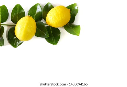 fresh lemon lime and leaves isolated on white background