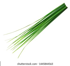 frische Zitronengrasblätter einzeln auf weißem Hintergrund, Draufsicht