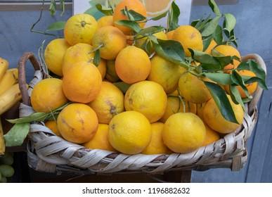 Fresh lemons on Display Along the Amalfi Coast in Italy