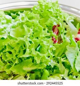 Fresh lettuce in a bowl