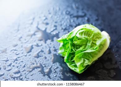 Fresh lettuce on a black background, selective focus
