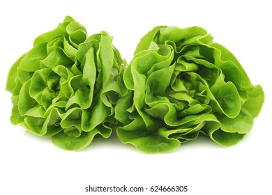 fresh lettuce on a white background