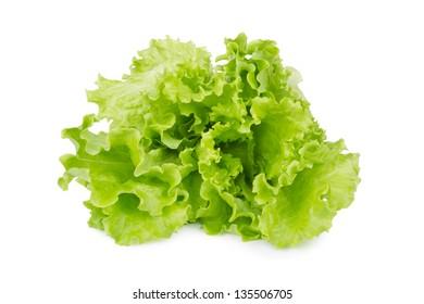 Fresh lettuce salad isolated on white background
