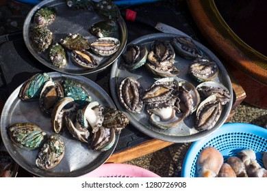Fresh life abalones sell in seafood market