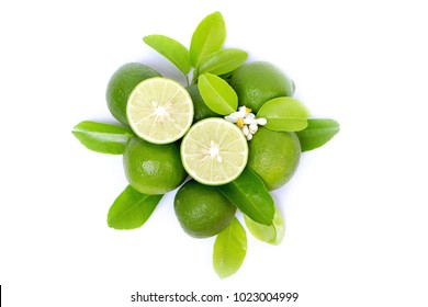 fresh lime slice and green leaf isolated on white background