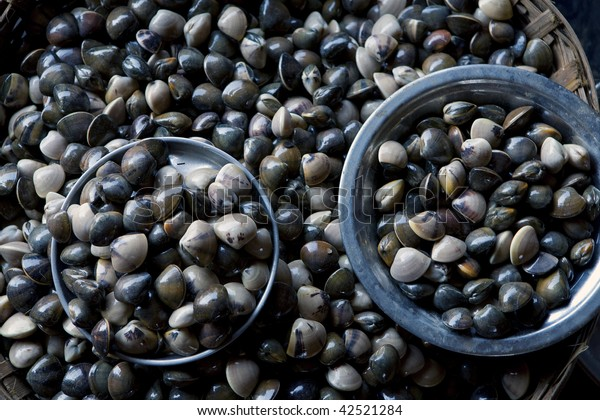 Fresh live mussels for sale at a fish market