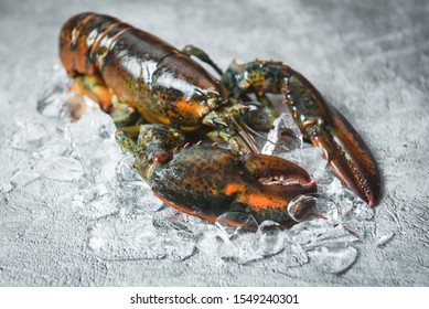 Fresh lobster shellfish in the seafood restaurant for cooked food / Raw lobster on ice on a black stone table top view , selective focus
