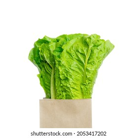 Fresh lola rosso lettuce leaves in craft package isolated on white background.