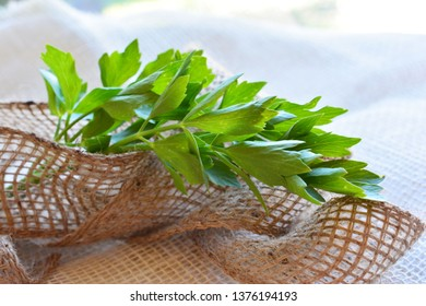 Fresh lovage on a natural background