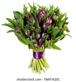 Fresh, lush bouquet of purple tulips isolated on white