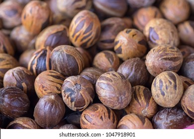 Fresh mace and nutmeg with selective focus