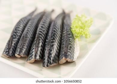 fresh mackerel filets
