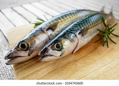 Fresh mackerel fish on the board with herbs and spices.