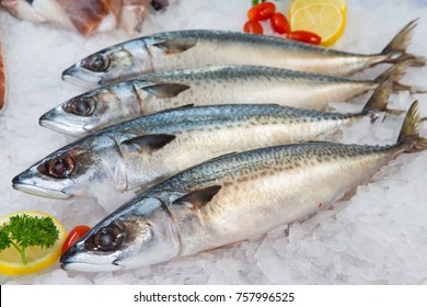 Fresh Mackerel or Saba Fish on ice in market