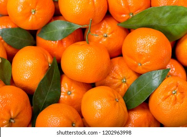 Fresh mandarin oranges fruit or tangerines with leaves,  as background