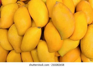 Fresh mango fruit background.