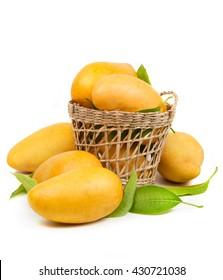 Fresh mango and leaves in basket isolated white background