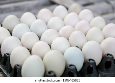Fresh market have eggs and duck eggs in a fresh egg panel is a food that can be cooked to a wide range of people in Asia and popular people around the world are eating.