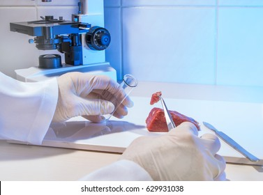 Fresh meat is examined in a laboratory