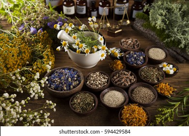 Fresh medicinal, healing herbs on wooden