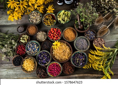 Fresh medicinal herbs on wooden background